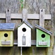 Three birdhouses on old wooden fence — Stock Photo #5830486