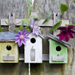 Three birdhouses on old wooden fence — Stock Photo #5830491