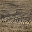 Plowed field — Stock Photo #5690305