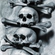 Skulls and bones — Stock Photo #6072424