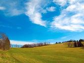 Paysage de printemps — Photo