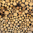 Wooden logs — Stock Photo #6505656