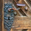 Old doors — Stock Photo #6505705