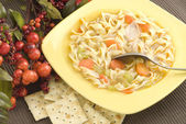 Homemade Chicken Noodle Soup with Crackers — Stock Photo