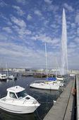 Geneva lake — Stock Photo