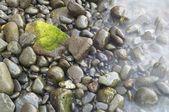 Pebble beach — Stock Photo
