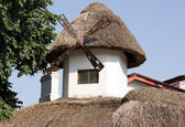 Thatched peasant hut — Stock Photo