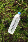 Algae and bottled water — Stock Photo