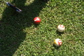 Play the Croquet — Stock Photo