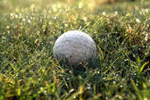 Golf driving range — Stock Photo