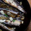 Garlic pacific  Saury - Photo