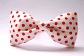 Red dot bow tie — Stock Photo
