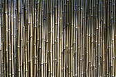 Chinese zen bamboo wall — Stock Photo