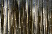 Chinese zen bamboo wall — Stockfoto