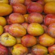 Special varieties of mango — Stock Photo