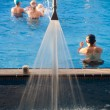 Stock Photo: Spa and swim pool