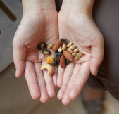 Dried nuts — Stock Photo
