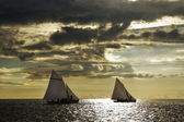 Sailing boats 4 — Stock fotografie