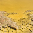 Stock Photo: Polluted water detail