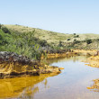 Stock Photo: Polluted river
