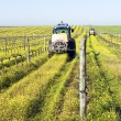 Tractors spraying the vineyard - Stock Photo