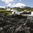 Stock Photo: Basalt rocks, Pico island, Azores
