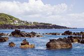 Littoral peu profonde de l'île de pico, açores — Photo