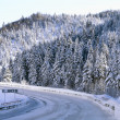 Stock Photo: Winter mountain road