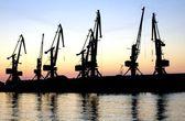 Evening port — Stok fotoğraf