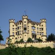 Stock Photo: Castle Hohenschwangau in Alps