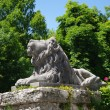 Statue of brooding lion — Stock Photo