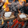 Toasts with lard - Stock Photo