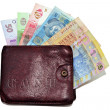 Hrivna cash and wallet — Stock Photo