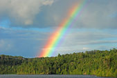 Rainbow in the Wilderness — Stock Photo