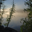 Morning Mist in the Quetico — Stock Photo