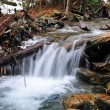 Stock Photo: A small stream in the Smoky Mountains