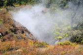 Steam from a vent on an active volcano — Stock Photo