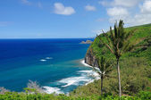 The Pololu lookout in Hawaii — Stock Photo