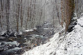 Spring Snow in the Mountains — Stock Photo