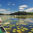 Canoeing through the Lily pads - Stock Photo