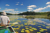 Canoeing through the Lily pads — Stock Photo