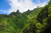 Tropical cliffs in Hawaii — Stock Photo