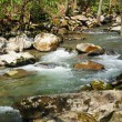Mountain stream in the Spring — Stock Photo