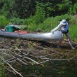 Clearing the Beaver Dam — Stock Photo #5672807