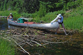 Clearing the Beaver Dam — Stock Photo