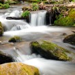 Stock Photo: A mountain stream in the spring
