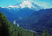 Mt Rainier and the White River — Stock Photo