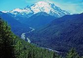 Mt Rainier and the White River — Stock Photo