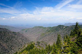 Clear day on the Appalachian Trail — Stock Photo