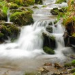 Mountain creek in the early spring — Stock Photo